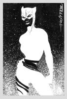 catwoman black n white3 by TomKellyART