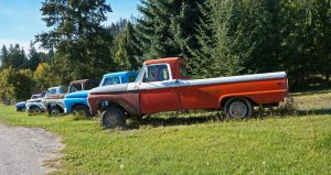 Ford Line-up by tundra-timmy