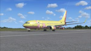 Fluttershy Private Jet FSX by Rubez2525