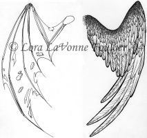 wings for scuda by lavonne