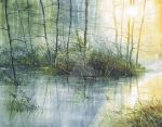 Forest swamp by petiteartiste666