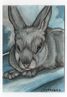 Mr. No Name Rabbit ACEO by MorRokko