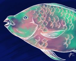 PARROT FISH by Little-Bluefish