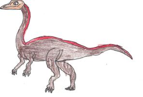 the ostrich like lizard by trexking45
