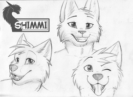 Pencil Busts by ShimmiDragon