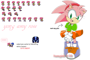young amy rose sprites by LexxArt