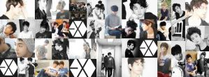EXO cover by NanA-0330