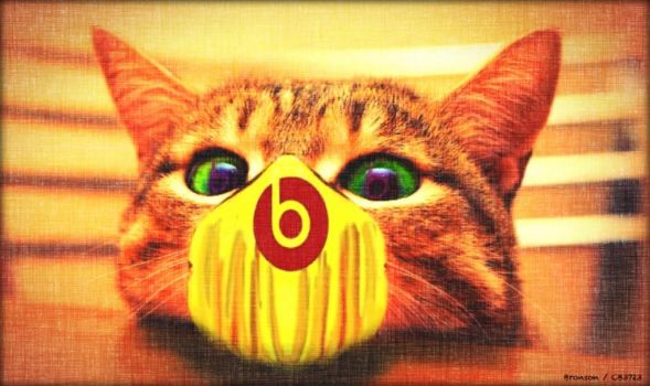 Rave Cat Vs. beats by dr dre by CB3723