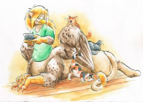 Playing with cats by Cervelet