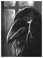 The Black Raven by Pierropod