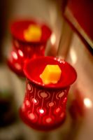 Lensbaby Scentsy II by LDFranklin