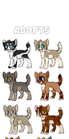 ADOPTABLES | Batch Four | OPEN | PRICES UPDATED by rainwolfeh