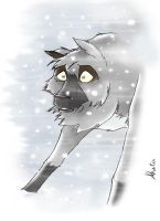 Wolf in a Snow Storm by Akita-or-Aki