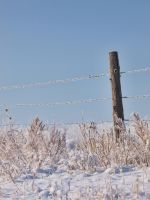snowy fence 5 by fotophi