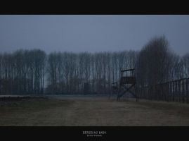 Birkenau 0454 by JuliaKretsch