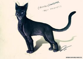 Crowpaw / Crowfeather by AmyVsTheWorld