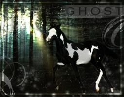 Ghost-manip by ponyluva