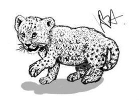 FREE Leopard Cub Lineart by Animal-Talents