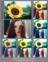 Photoshop Actions - In the Sun by dreamswoman