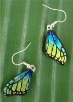 Butterfly Wing Earrings Fused by FusedElegance