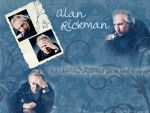 Alan Rickman Wallpaper by SerenaLuv