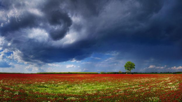 Hungarian skies CCIX. by realityDream