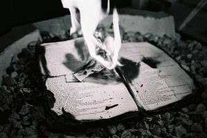 Burning Books Seven by lostbooks
