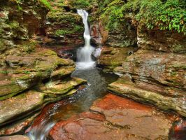 Ricketts Glen State Park 98 by Dracoart-Stock