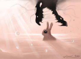 I bet the bunny wins... by williamcjones48