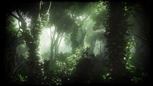 Foggy Jungle by Andywong75