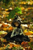 See how the autumn by aniszyma