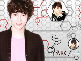 EXO - Suho by jerlyn92