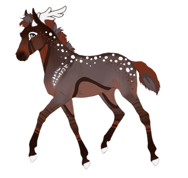 Padro Foal Design 9845 for The-Elvenqueen by theMadFurball