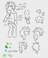 A splendid character sheet by TwitchyGreyFox