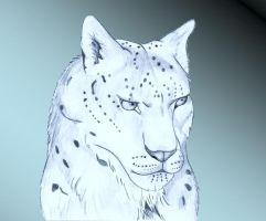 snow leopard in blue by MysteryOfTheWildCats