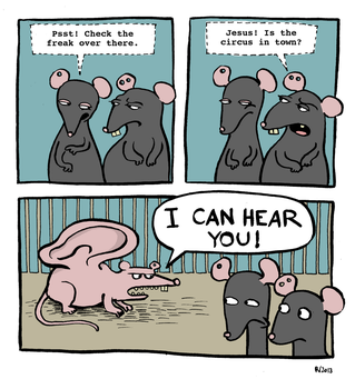 The hills have eyes. The mice have ears. by Velica