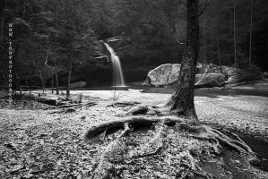 Lower Falls BW by TRBPhotographyLLC