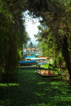 Por Xochimilco 4 by whitekeej