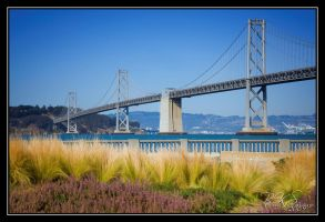 The Bay Bridge by o0oLUXo0o