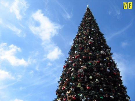 Disneyland Christmas Tree 2011 by unknowninspiration