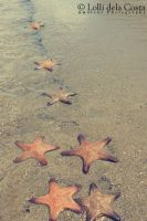 Stars by the sea by missoptimism