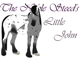 The Noble Steed's Little John by RavenRidgeStables