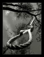 The rope by Seffis