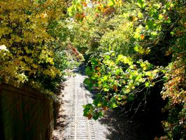 Train Track by FairieGoodMother