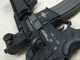 M16 MWS by Ironfingers