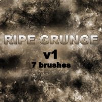 RIPE GRUNGE v1 - 7 Brushes by RazorICE