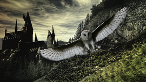 Hedwig by centric-prometheus