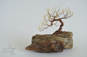 Miniature Bonsai Wire Tree by NoriAnum