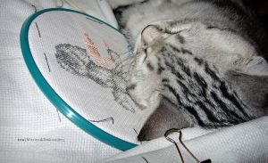 Mitya and Embroidery by SoulcrackeD