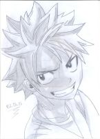 FAIRY TAIL PROJECT-02: Natsu Dragneel by uczennica06